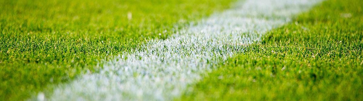 Fleury sport section football
